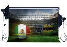 Mexicaanse Voetbal Veld Achtergrond Interieur Stadion Achtergronden Stage Licht Groen Grasland Vogel Eye Achtergrond