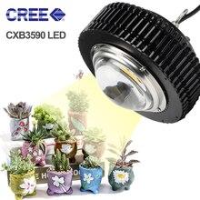 Für Lampe CXB3590 spektrum