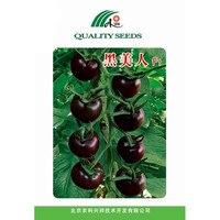 بذور الفاكهة بذور الطماطم السوداء الجمال f1 في الطماطم الجيل الهجين المبكر 1 جرام