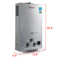 Wall mounted Geyser Flue Type Gas Boiler Domestic Instant Tankless Propane Gas Water Heater