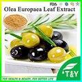 Супер Антиоксидант Olive Leaf Extract 5 ~ 80% Гидрокситирозола