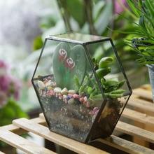 Desktop DIY Geometric Hexagon Glass Box Succulent Plant Planter Decoration Flower Pot Vertical Garden Bonsai Terrarium