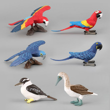 6 arten Action & Spielzeug Figur Wildlife Vogel Tier Simulation PVC Modell Sammeln Puppe Figur Sammlung Für Kid Kinder Geschenk