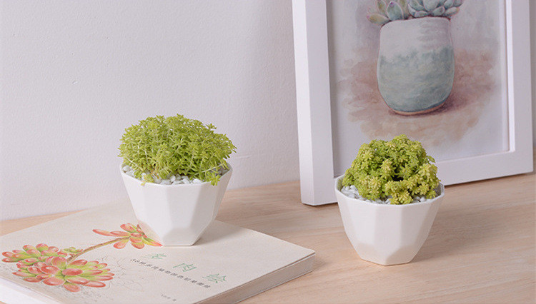 Amazing Great Idea For Small Plants! White Ceramic Geometric Shape Flower Pot,Table  Small Flowerpot Green Planter Office Home Decoration In Flower Pots U0026  Planters ...