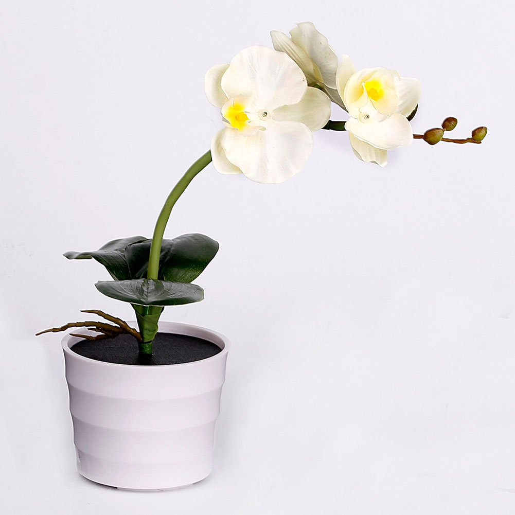 Nice Bedroom Home Potted Plant Office Led Decorative Indoor Garden Energy Saving Flower Hotel Outdoor Solar Light Fake Phalaenopsis Shrink-Proof Led Table Lamps Led Lamps