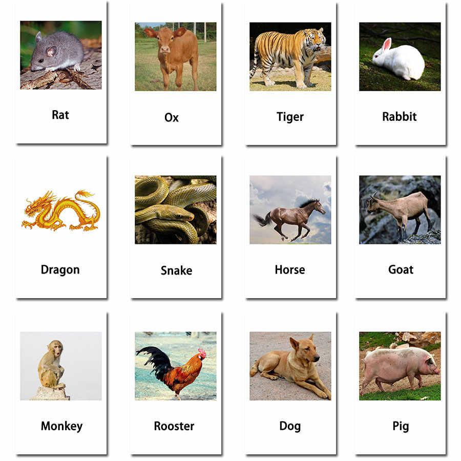 Монтессори жесты английские животные флэш-карты карманные открытки Обучающие Развивающие игрушки английское слово картина матч Игра Подарок для малышей