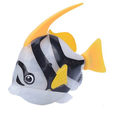 Angelfish Grey