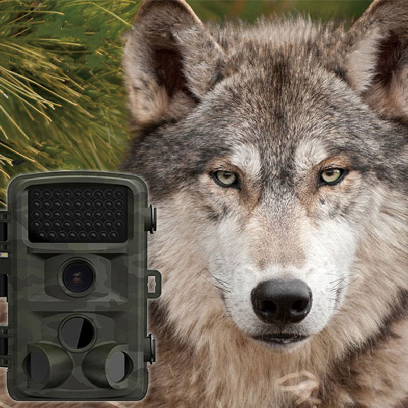 Hunting Camera 5MP HD 1080P 2.4 LCD Chasse Trail Camera Wild Trap Camcorder IR Night Vision Photo Traps Cam DVR Casus Kamera waterproof 2 5 lcd 8 0 mp cmos solar power ir night vision hunting trail security camera