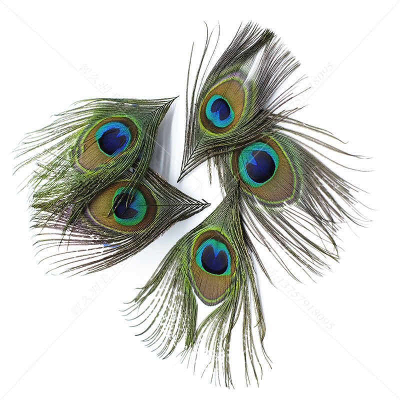 wholesale 10pcs natural Trimmed peacock feathers eyes 8-12cm for crafts wedding Earring decoration plumes Necklace accessories