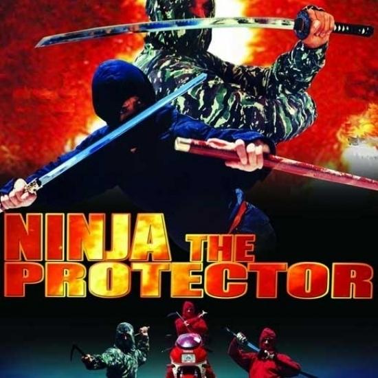 Ninja the Protector Movie Poster (11 x 17)