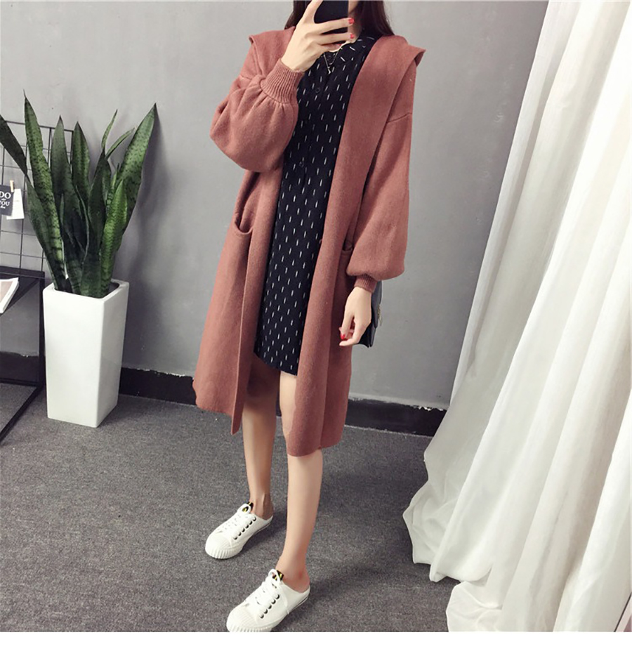 Autumn Winter Women Long Cardigans Hooded Sweaters Casual Knitted Outwear Puff Sleeves for Fashion Girls Female Warm Clothing (17)