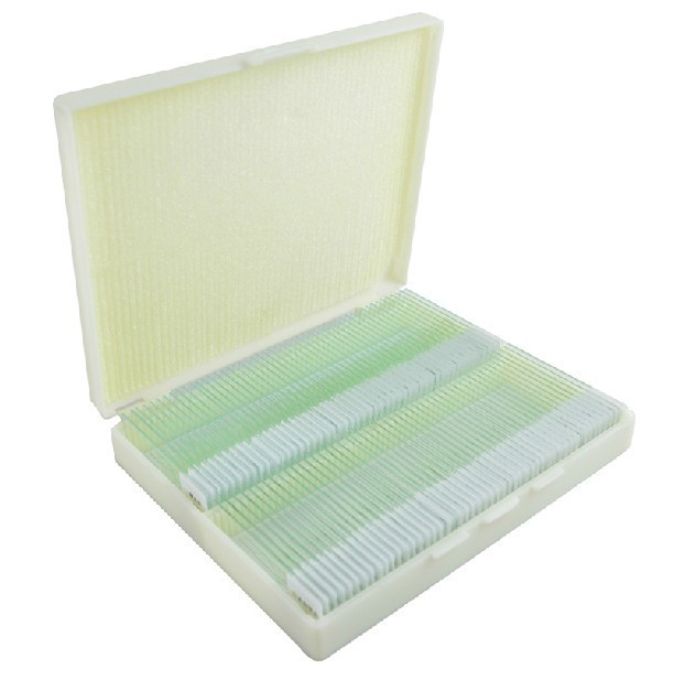 200PCS Biological Microscope Specimens Professional Prepared Plant Animal Insect Glass Microscope Slides for Lab Laboratory 100pcs professional student optical glass flower insect animal plant lab microscope specimen school bio microscope slides