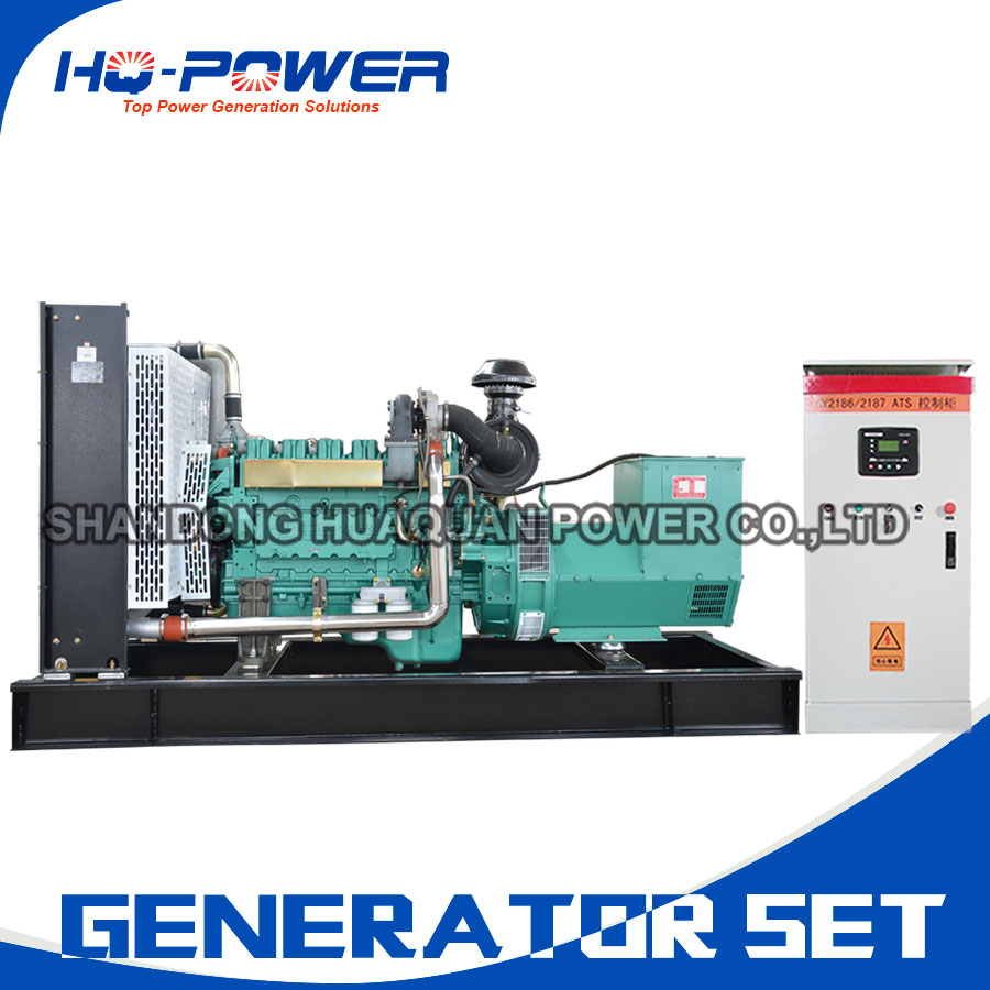 Good Value 200kw Diesel Generator With Automatic Transfer Switch For Switchgenerator Product Sale