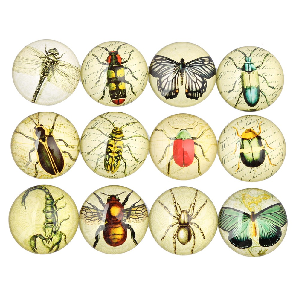 Butterfly Design 30mm Round Cabochons
