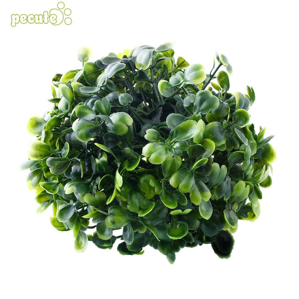 Nordic Aquarium Moss Fish Aquarium Alive Live Fishes Plants Aquaristics Shrimp Aquarium Moss Ball Water Grass Shrimp Water Grass