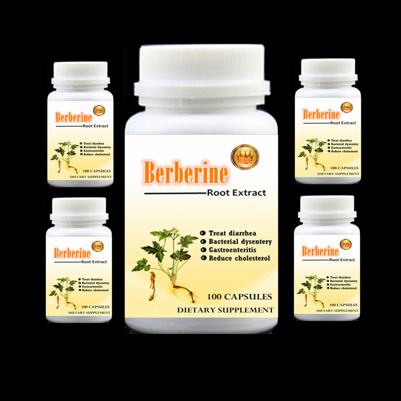 5 bottleS 500pieces Berberine Root Extract treatment of diarrhea,Bacterial dysentery,Gastroenteritis and reduce cholesterol tapan kumar dutta and parimal roychoudhury diagnosis and characterization of bacterial pathogens in animal
