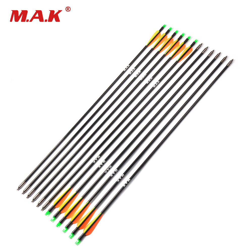 6/12pcs Fiberglass Arrow Length 30 Inches Spine 400 with Plastic Feather for Archery Hunting with Long Bow Hunting