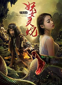 《玄魔笔记之妖女灵蛇》2017年中国大陆爱情,动作电影在线观看
