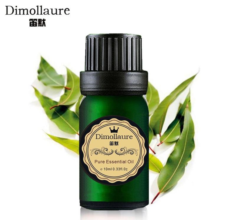 Dimollaure Aceite esencial de eucalipto Aire limpio Herida limpia Útil para resfriados Aromaterapia Cuidado de la piel Aceite de masaje Aceite de eucalipto