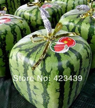 5 Paks, 20 Seeds / ack, Square watermelon, NON-GMO HEIRLOOM RED FOURSQUARE WATERMELON, 15KGS / FRUIT, PROFESSIONAL PACKING