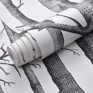 Image 4 - שחור לבן ליבנה עץ טפט חדרי שינה מודרניים עיצוב סלון קיר נייר רול כפרי יער יער טפטים פנינים