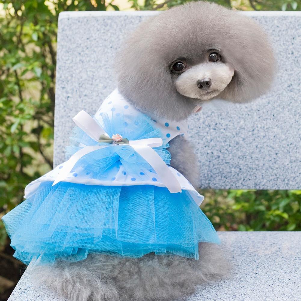Modern Dresses For Dogs Wedding Vignette - All Wedding Dresses ...