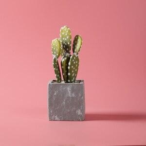 Image 3 - Бесшовный Фотофон 100 см * 200 см, 39 дюймов * 79 дюймов, розового цвета, с водонепроницаемостью, фотобумага для фото и видеосъемки, фотостудии