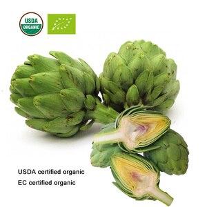 Image 5 - Usda e ce certificou extrato orgânico da folha de alcachofra 10:1 cynarin
