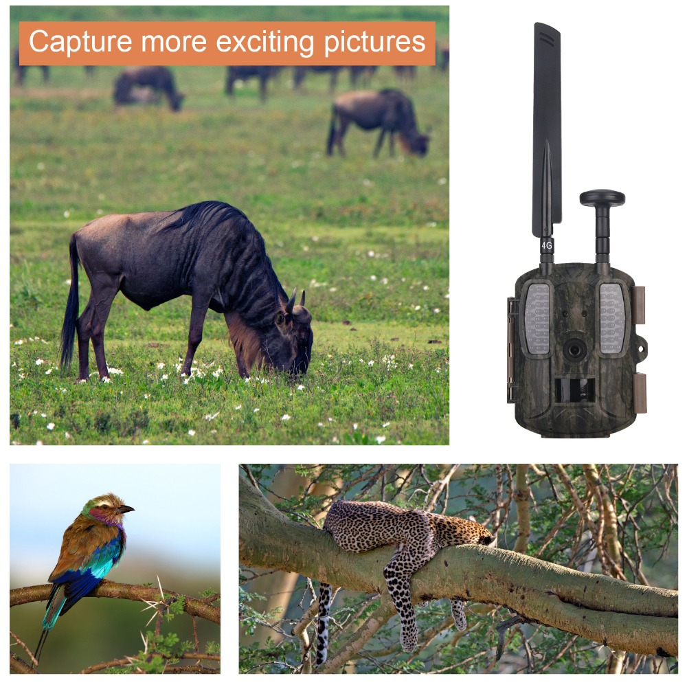 4G Hunting Camera BL480L-P Digital Video Camera Photo-Traps 4G FDD-LTE Hunting Trail Camera Trap Wild Camera Hunter Foto Chasse09