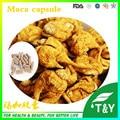 Pure Natural Maca Extract Powder 10:1 for man sex powder 500mg*500pcs/lot free shipping