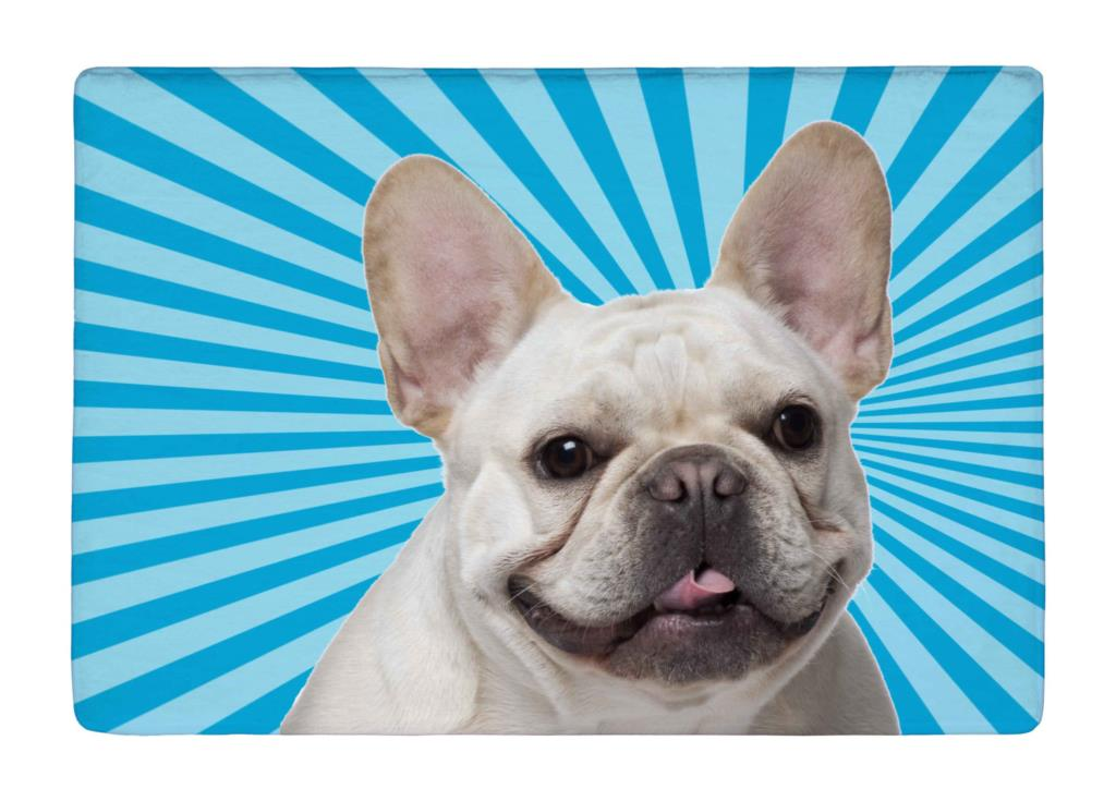 Floor Mat Blue Stripe Rays Cute Bulldog Print Non slip Rugs Carpets alfombra For font b