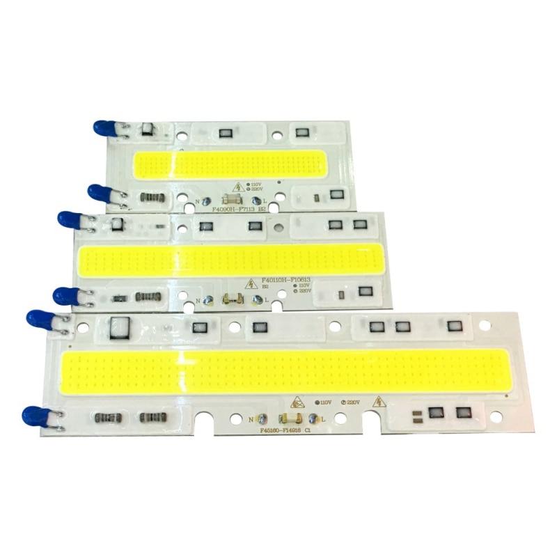 30W 50W 70W Led COB Chip IP65 Smart IC Light Lamps Warm/White 220/110V