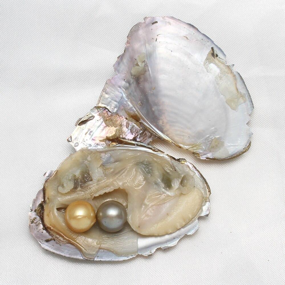 Emballage sous vide d'eau douce huître souhait perles rondes Akoya gris jaune perles rondes bricolage Bracelet collier fabrication de bijoux