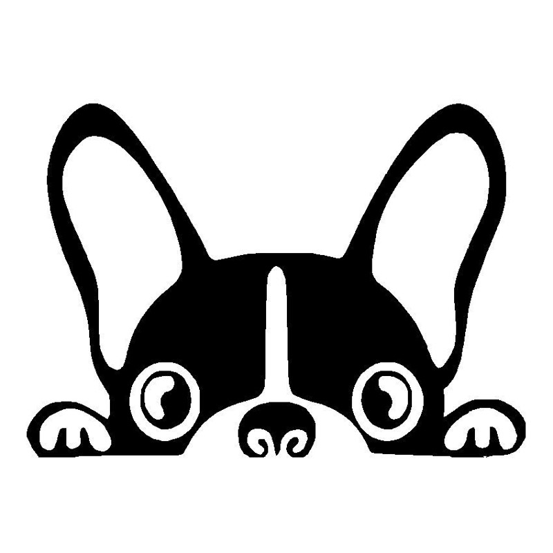 15.2*10.8CM Boston Terrier Dog Vinyl Decal Cute Funny Peep Animal Car Tail Decorative Stickers Black/Sliver C6-1034