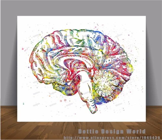 Menschliche Gehirn Anatomie druck Aquarell Leinwand malerei ...