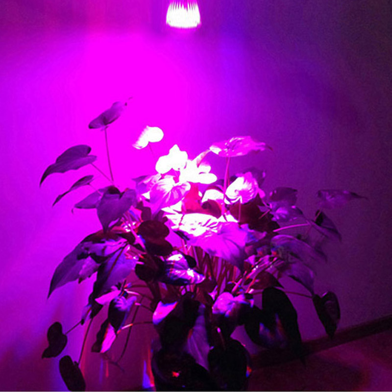 Full Spectrum 10W LED Grow Light - E27; GU10; E14 Grow Par Bulb Lamp para plantas de semillero Crecimiento Floración en Grow Carpa