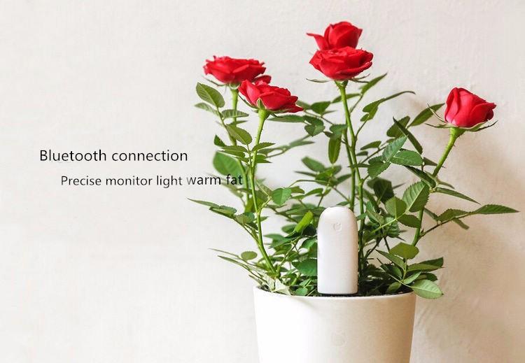 International version xiaomi mi flora monitora czujnik światła inteligentny tester cyfrowy kwiat trawy opieki gleby wody dla roślin ogrodowych 9