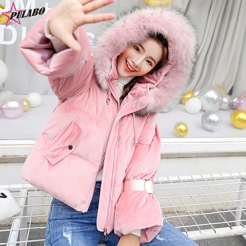 Winter High Quality Coats 2019 Female Shortt Winter jacket Women Thicken Warm Cotton-Padded Down Parkas Coat Faux Fur Collar