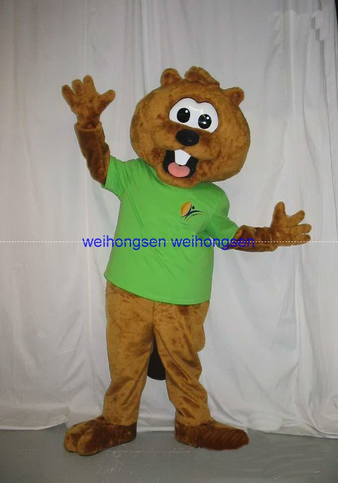 Halloween Costume 303.Us 133 48 29 Off Rapid Make Vibrant Picture Squirrel Mascot Costume For Halloween Christmas Party Costume Cartoon Costume 303 In Mascot From