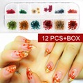 12 Colors Real Dry Dried Flowers Nail art Decoration DIY Nail Art Tips Freeshipping GH001-12