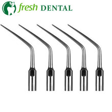 Dental 5PCS Dental Ultrasonic Scaler Tips 5 PCS E3 NEW Dental Ultrasonic Scaler 120 Endo tip compatible EMS/Woodpecker E3 US dental 5pcs dental ultrasonic scaler tips 5 new dental ultrasonic supragingival scaling tip fit dte satelec scaler gd1 us