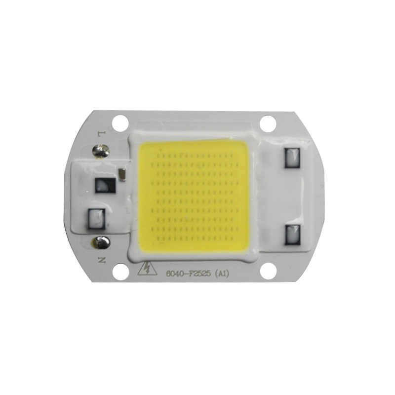 High Power LED Chip 20W 30W 50W Cold/Warm White 5000lm Lamp Beads LED COB Chip 220V 110V For DIY Projector LED Flood Light