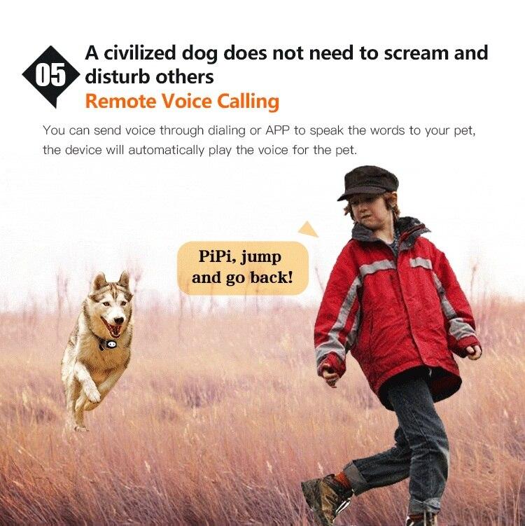 GPS Dog Tracker