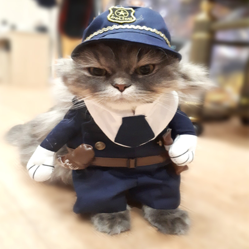 Funny Cat Costume Pirate Nurse Policeman Cat Clothes Fashion Halloween Corsair Halloween Costume Pet Clothes Suit For Cat 27Z