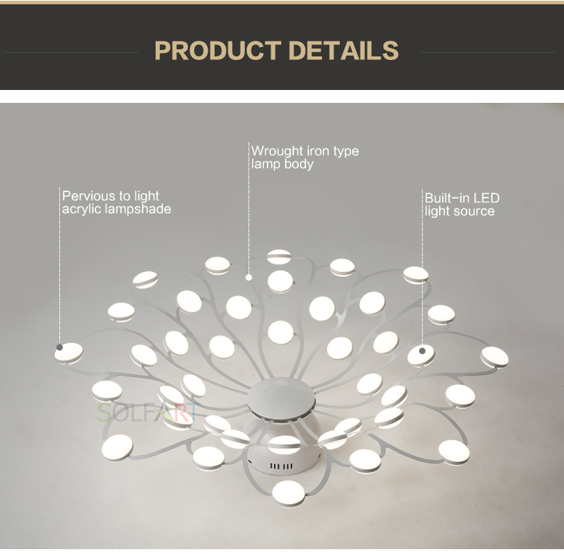 8047-LED Ceiling Light Sconce Luminaria Chandelier Ceiling Avize Light Fixtures Ceiling Lamp_14