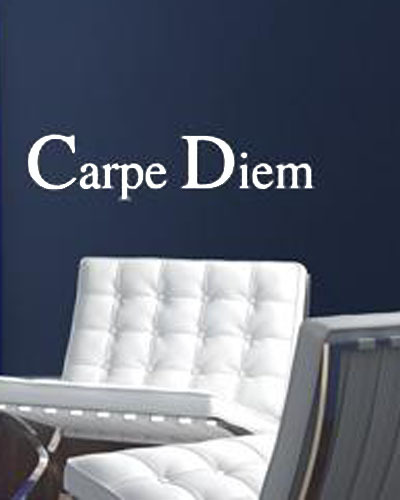 Wall Decals Quotes Carpe Diem Seizes The Day In Latin Home Decoration Wall Art Sticker ...