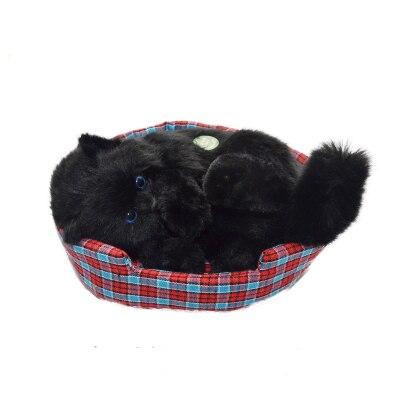 Livraison gratuite drôle chat jouet pour cadeau d'anniversaire et décoration