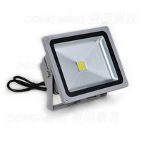 2 years warranty 10pcs Aluminum Waterproof IP65 RGB LED outdoor spot light 30w high power 2500lm AC85 265V with CE ROHS