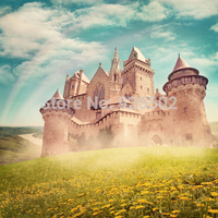 Thin Fabric Cloth Printed Photography Background Castle Backdrop 5ft X 7ft D 2679