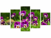 5 Pieces Free Shippting Canvas Painting Purple Flowers Wall Art Modern Living Room Decorative Frame